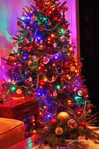 Choinka Bożonarodzeniowa