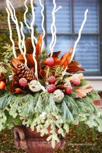 zielen w donicy dekoracja zimowa do ogrodu