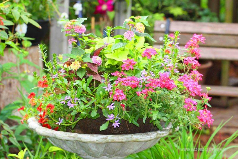 kwiatowa dekoracja do ogrodu