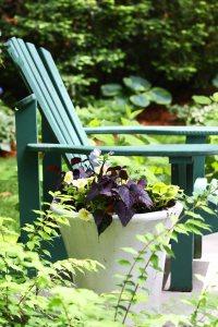 krzesło w ogrodzie na patio