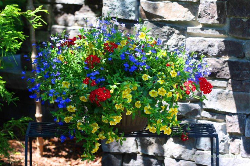 donica z kwiatami dekoracja do ogrodu